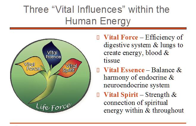 etms-human-energy